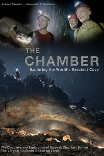 The-Chamber-Poster-Web