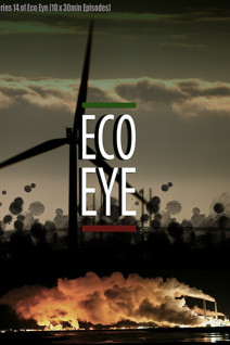 Eco-Eye-Poster-Web