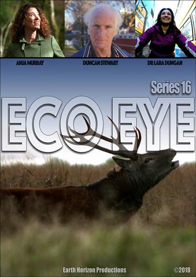 Eco Eye Poster Web