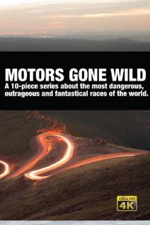 Motors-Gone-Wild-Poster