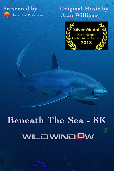 Beneath-the-Sea-Poster-Web