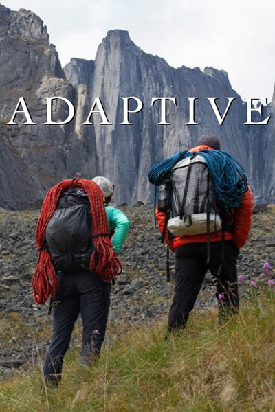 Adaptive-Poster-Web