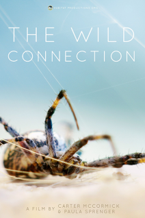 The Wild Connection Poster Web