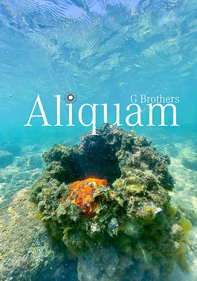 Aliquam Poster Web